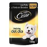 Cesar Bolsitas de Comida Húmeda para Perros en Salsa, Sabor Pollo y Verdura (Pack de 24 x 100g)