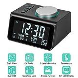 Radio Reloj Despertador, FM Reloj de Radio Digital Reloj de Cabecera con Puerto de Carga USB Doble, Pantalla de...